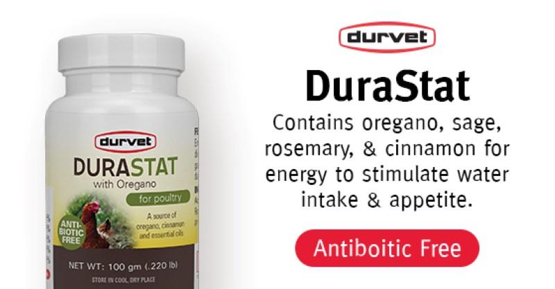 Product Spotlight: DuraStat