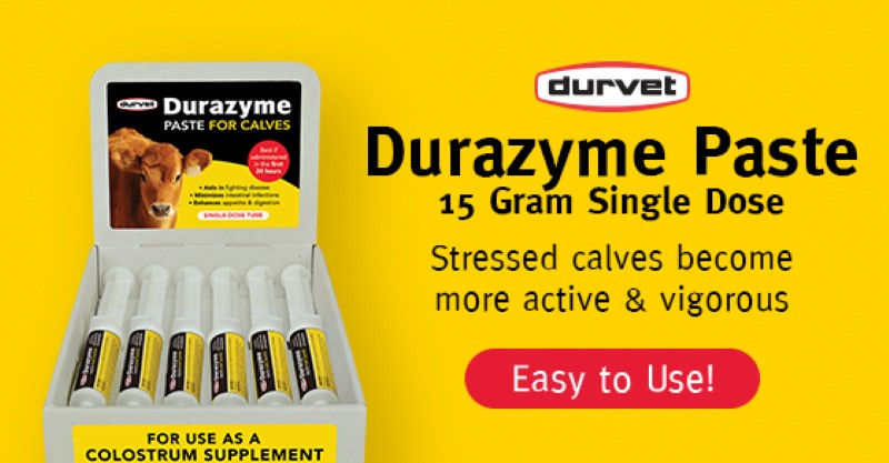 Product Spotlight: Durazyme Paste