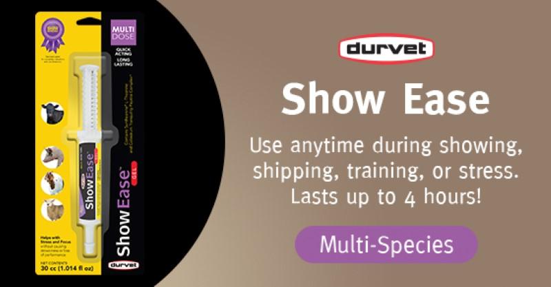 Product Spotlight: ShowEase