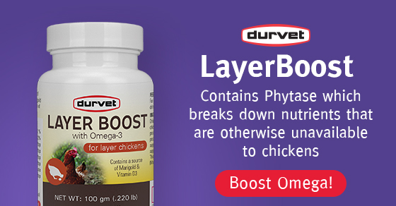 PS-Layerboost