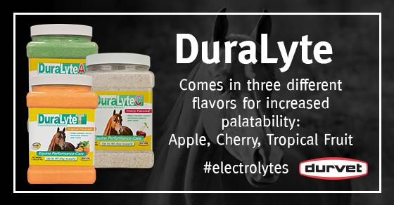 DuraLyte560x292